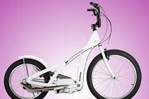 Rower 3G Stepperbike Work It!